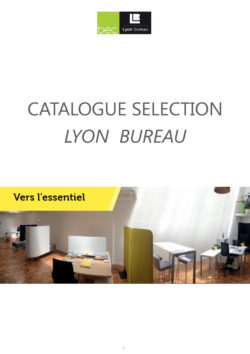 thumbnail of _1.CATALOGUE-Lyon Bureau _ DIRECTION_ Oct_2018